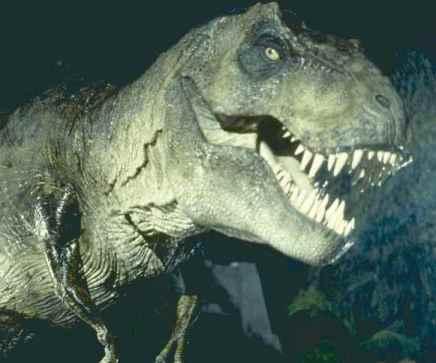 jurassic-park-tyranosaurus-rex32.jpg